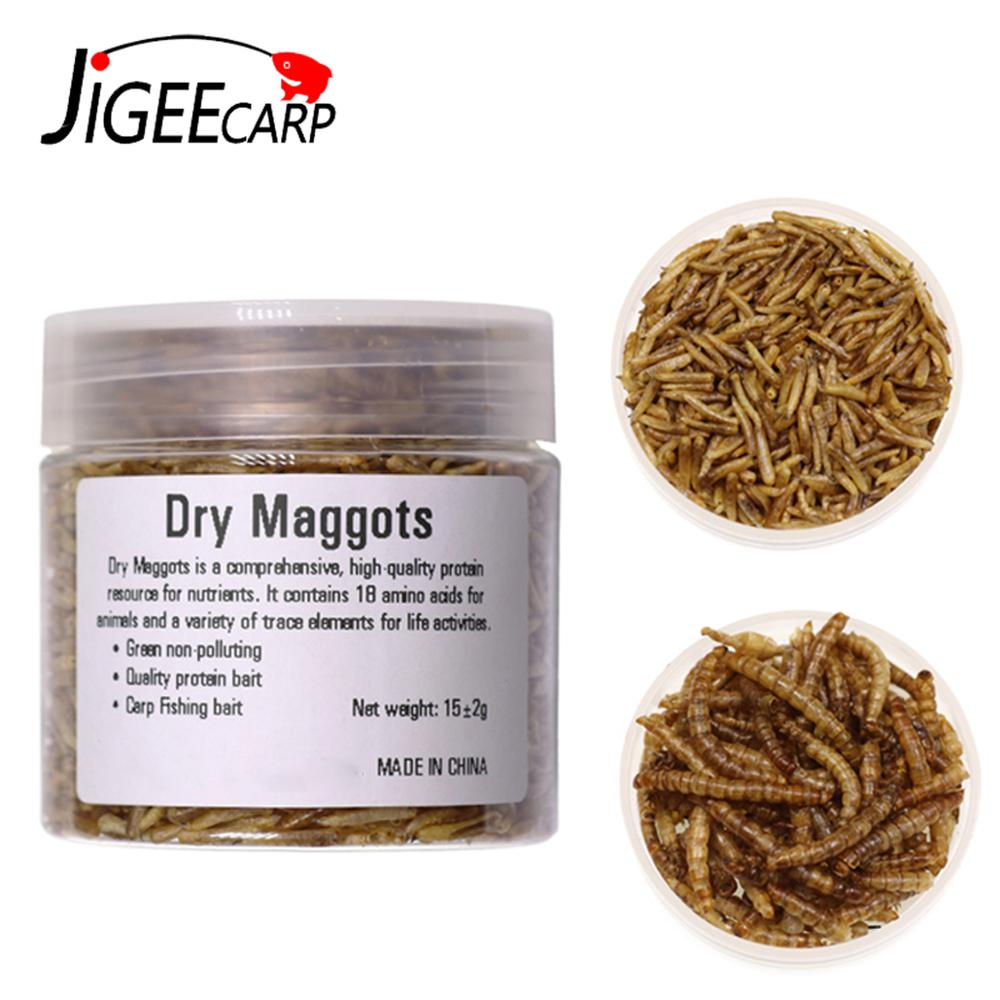 JIGEECARP 1 Bottle Natural Carp Fishing Baits Dried Bread Worms  Dried Maggots For Carp Fishing  High Protein Insects Feeder