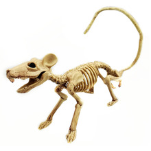 Simulation Supplies House Animal Reusable Halloween Decoration Props Skeleton Bones Bar Lifelike Ornament Multi Function ABS