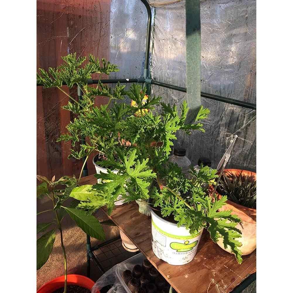 PVC مقاومة للتآكل غطاء نبات الدفيئة مصنع غطاء للماء المضادة للأشعة فوق البنفسجية نباتات للحديقة الزهور خيمة (دون الحديد حامل)