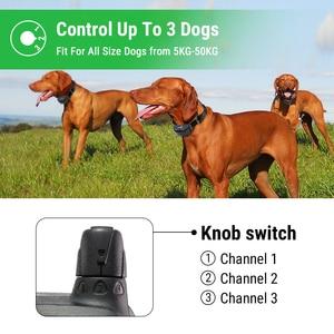 Image 5 - Ipets 618 1 800m מרחוק נטענת ועמיד למים עבור כלבי אימון