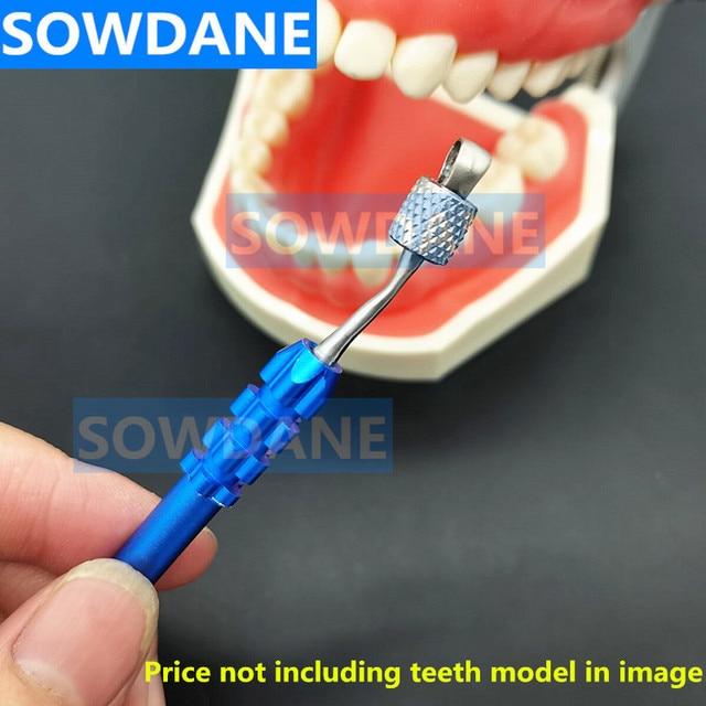 Dental Endodontic File Files Holder Handuse Files Gripper Root Canal K R H C Files Machine Rotary Files Holder For Dentist Tool