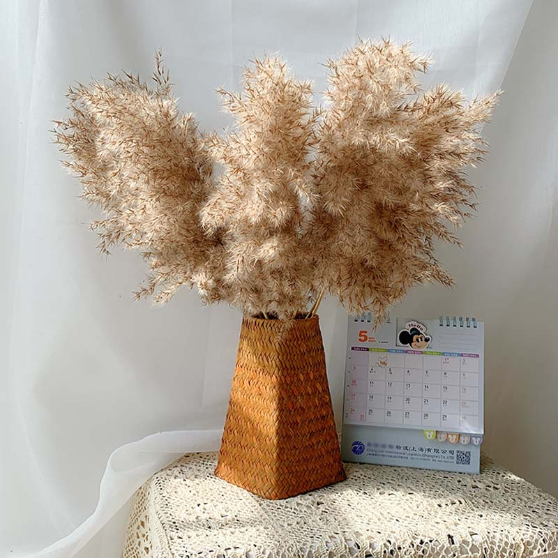 Dried Pampas Grass Decor Fluffy Tall 20-22'' Wedding Flowers Arrangement Natural Bouquet For Home Christmas Decorations Vase