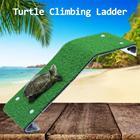 Turtle Climbing Ladd...