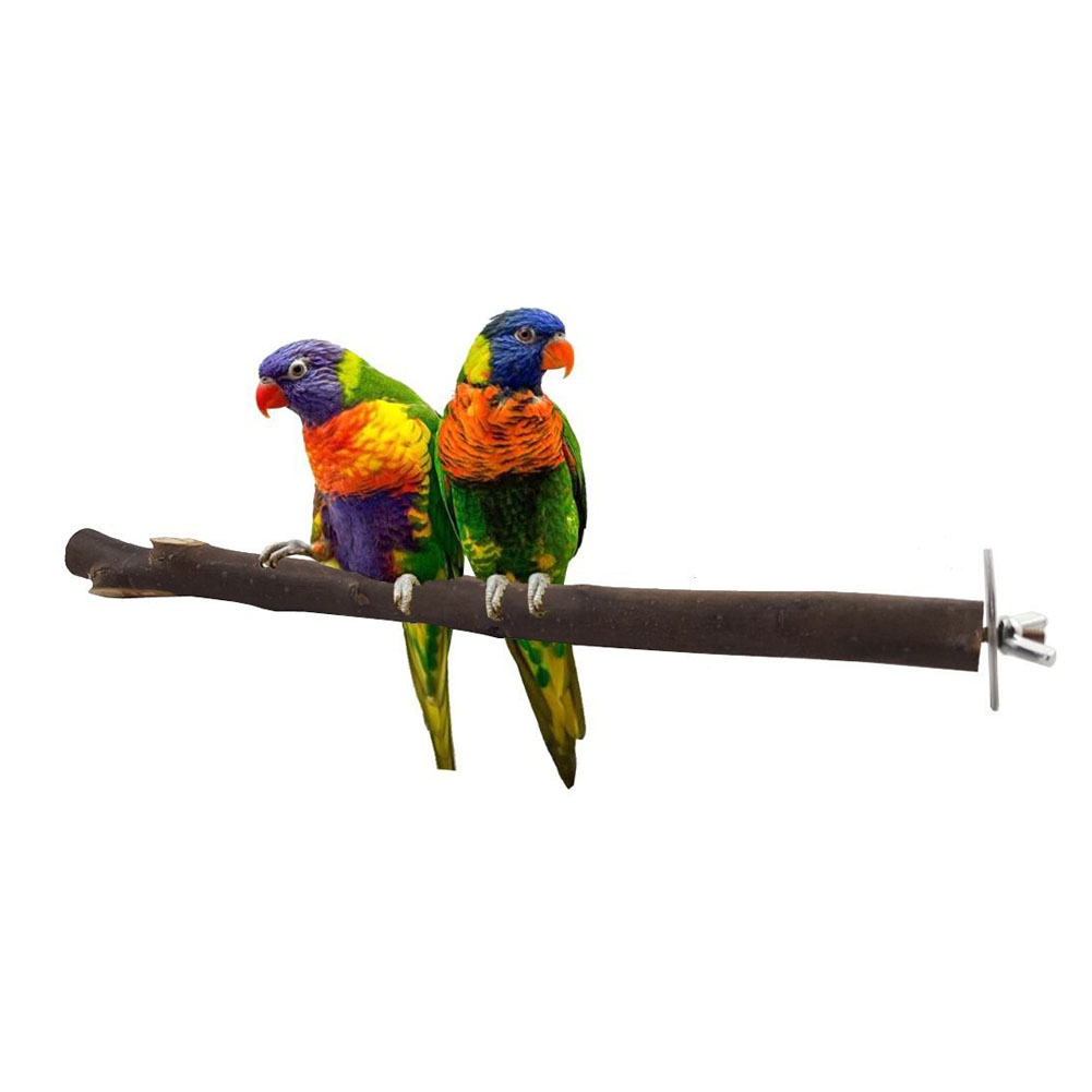 Pet Parrot Bird Cage Raw Wood Branch Fork Stand Rack Perches Toy Birds Standing Sticks Drop Shipping
