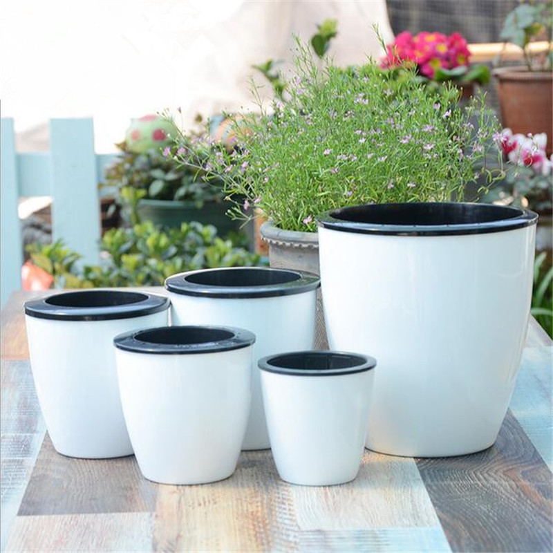 New Automatic Water-absorbing Flower Pots Bonsai Creative Multi-meat Plant Hydroponic Potted Large Plastic Flower Pots Wholesale