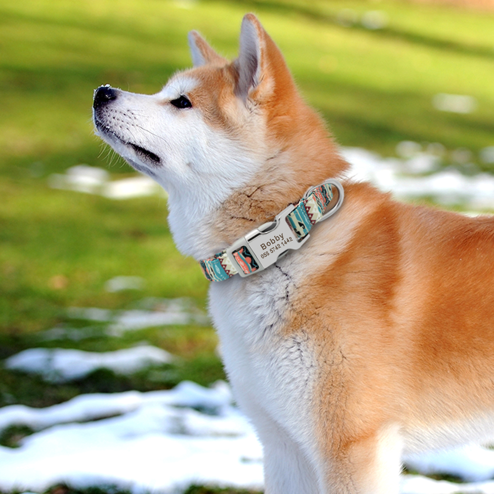 Dog - Personalised  Pet Collar  Free Engraving