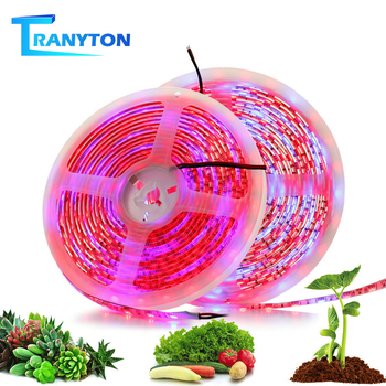 LED Grow Lights DC12V Red Blue Growing Strip 5050 Phyto Lamps Full Spectrum for Greenhouse Hydroponic Plant 5M/Lot 2pcs lot 1000w double chips led grow lights full spectrum growing lamps for greenhouse hydroponics systems free shipping