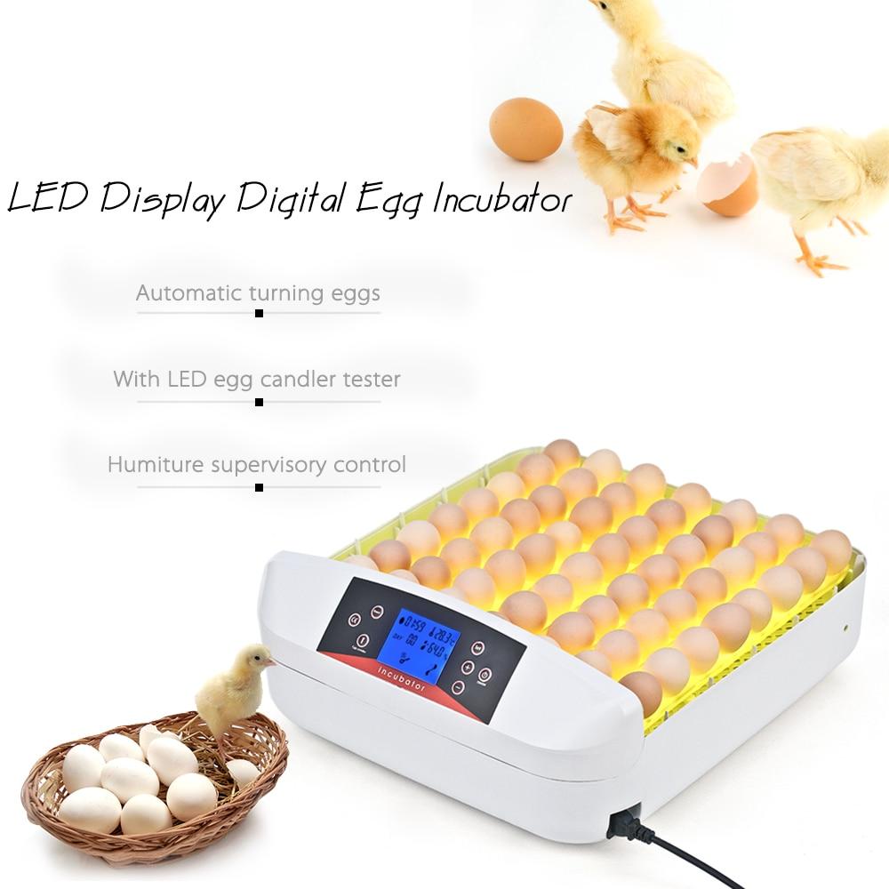 56 яиц все в одном интеллектуальный полностью автоматический инкубатор яйцо инкубационная машина для утиных голубей перепелиных попугаев птицы яйца - 3