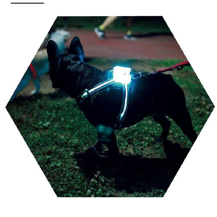 de Cão Personalizado Nylon Dog Pet Tag