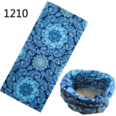 1210-s243
