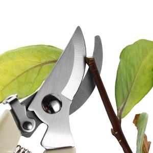 Image 5 - Drtools 17cm גיזום עץ חותך גינון גיזום גזירה מספריים נירוסטה חיתוך כלים סט בית כלים אנטי להחליק