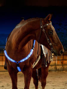 Riding-Equipment Equestrian-Belt Horse-Harness Racing Outdoor LED Dual Nylon Equitation