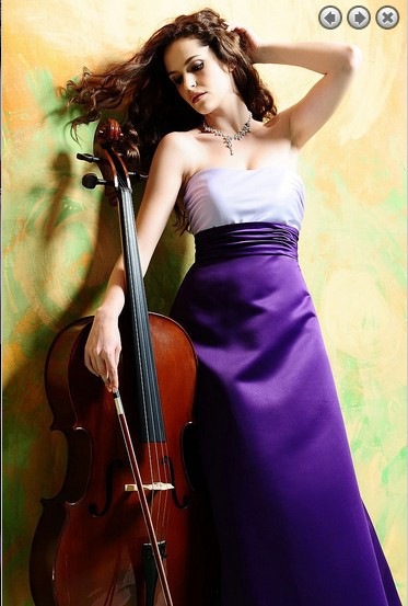 Free Shipping 2016 New Design Evening Formal Evening Vestidos Formales Gown Satin Customized Purple Celebrity Evening Dresses