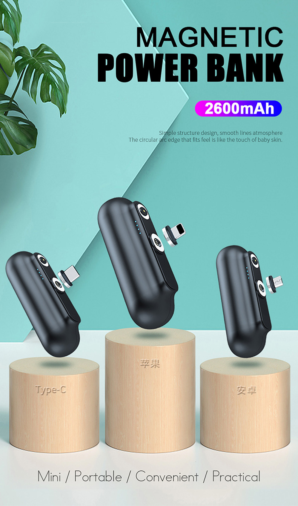 Portable Magnetic Charger