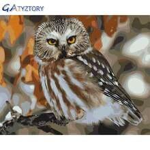 Gatyztory diy Раскраска по номерам птицы Серая Сова для детей