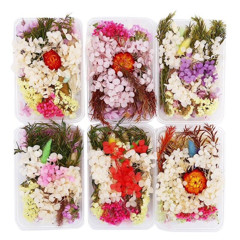 1 коробка, высушенные цветы в разных стилях