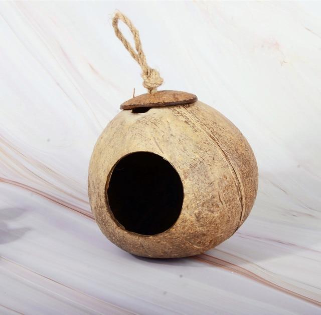 Noix de coco naturelle nid d'oiseau nid d'oiseau perroquet été nid d'oiseau coquille de noix de coco nid perroquet fournitures