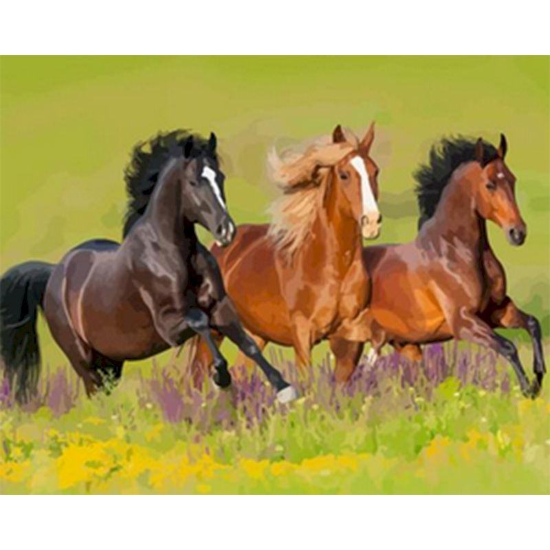 Three horse race Paints By Numbers Animals 40x50cm Pictures Oil Painting By Numbers Set Gift Acrylic Coloring By Numbers Canvas-0