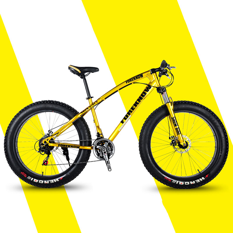 Mountain Bike Off Road Beach Snowmobile Adult Wide Tire Car High Carbon Steel Male And Female Students Bicycle