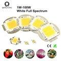 Полный спектр белого светодиодный чип 5000K 380-780nm 1 Вт 3 Вт 5 Вт 10 Вт 20 Вт 30 Вт 50 Вт 100 Вт светильник для выращивания аквариумных растений источник ...