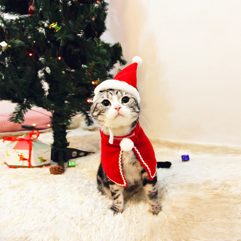 Pet Dog Cat Clothes Christmas Costume Cat Hat Scarf Cloak Dress Up For Kitten Puppy Small Dog Xmas New Year Costume Accessories 11