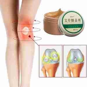50g Herbal Wormwood Knee Cream
