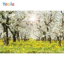 Frühling Blume Baum Garten Park Natur Landschaft Baby Dusche Geburtstag Hintergrund Vinyl Fotografie Hintergrund Für Foto Studio Schießen