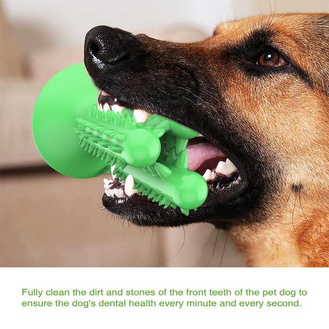 Toothbrush Chew Toy  1