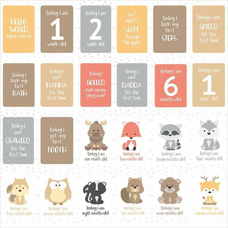 24Pcs/Set For Memory Baby Pregnant Women Monthly Photograph Cards Fun Month Milestone Cards