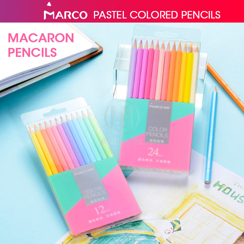 Lapis Colorido Profissional 24 Para Desenhar Material Escolar