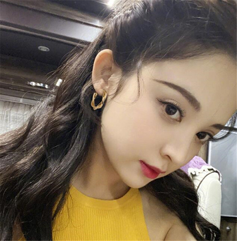 LATS Fashion Distortion Interweave Twist Metal Circle Geometric Round Hoop Earrings for Women Accessories Retro Party Jewelry 5
