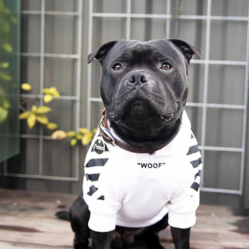"Sweatshirt ""Woof"""