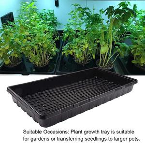 Plant Growing Trays Seed Tray