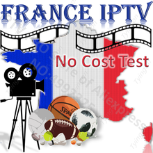 IPTV francés de Francia EPG Europa Global caja de TV inteligente PC estable ios Android M3U Enigma2 MG XXX código Panel revendedor HD FHD HEVC 4k(China)