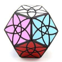 Bauhinia flor cubo mágico magnetique cubo forma dodecaedro cubo velocidade cubo brinquedos educativos para crianças bandaged cubo fantasia brinquedos