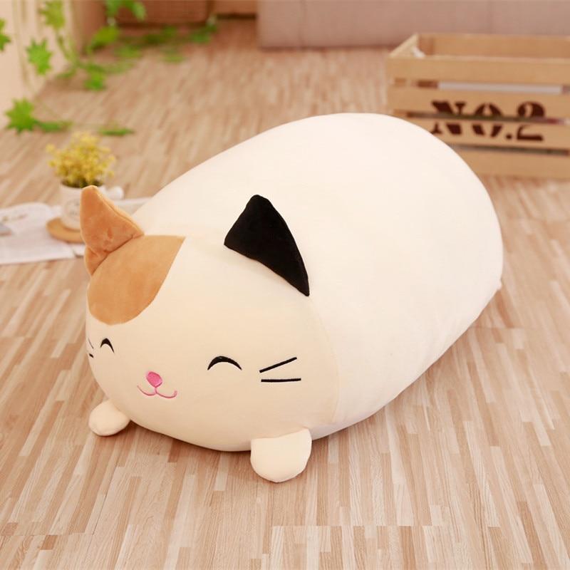 30cm cat