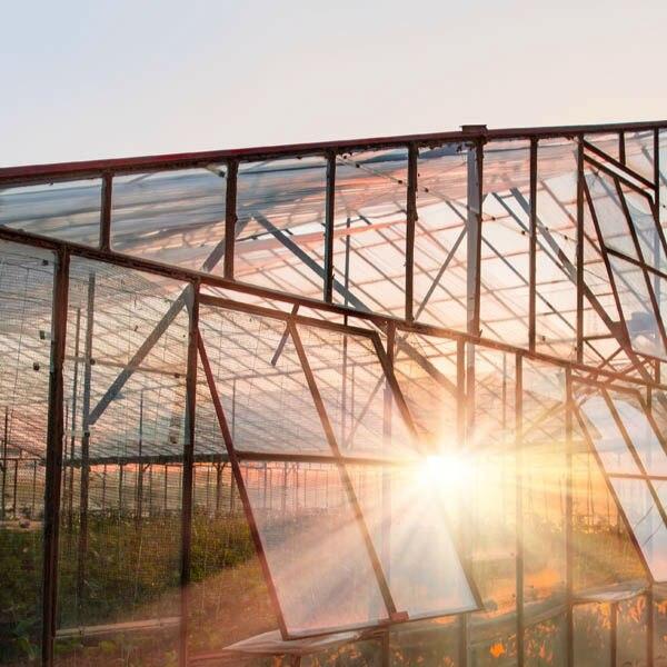 玻璃温室大棚建设-农场亲子乐园
