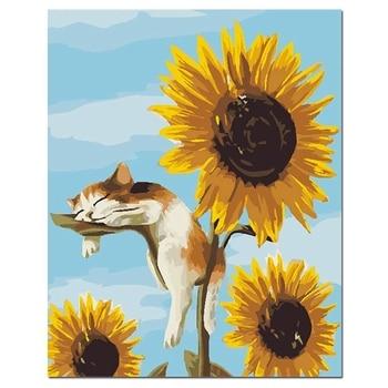 Kits de pintura por números con pinceles y pigmento acrílico, lienzo pintura bricolaje para adultos principiantes, Gato y girasol
