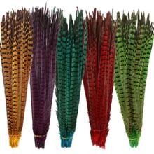 Plumes de faisan à col rond, longues et naturelles, pour l'artisanat, décoration de fête, 40-45CM, 16-18 pouces
