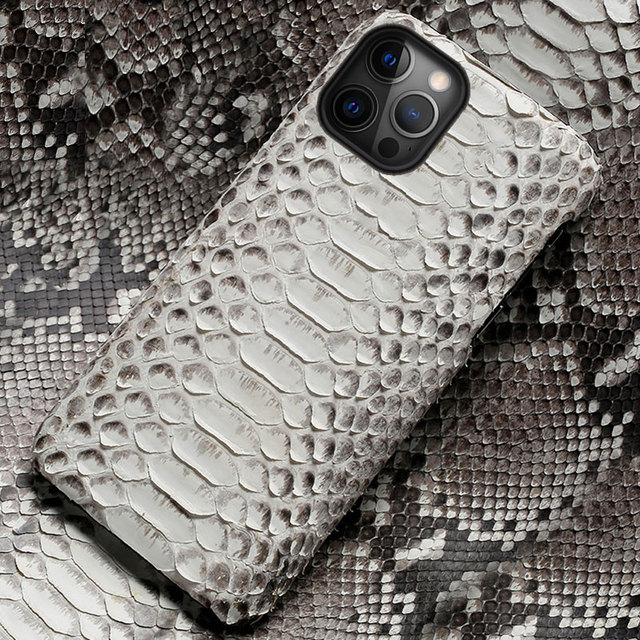 Genuine Python Leather Phone Case For iPhone 12 Pro Max 12 Mini 11 Pro Max X XS max XR 5s 6 6s 7 8 Plus SE 2020 snakeskin Cover 1