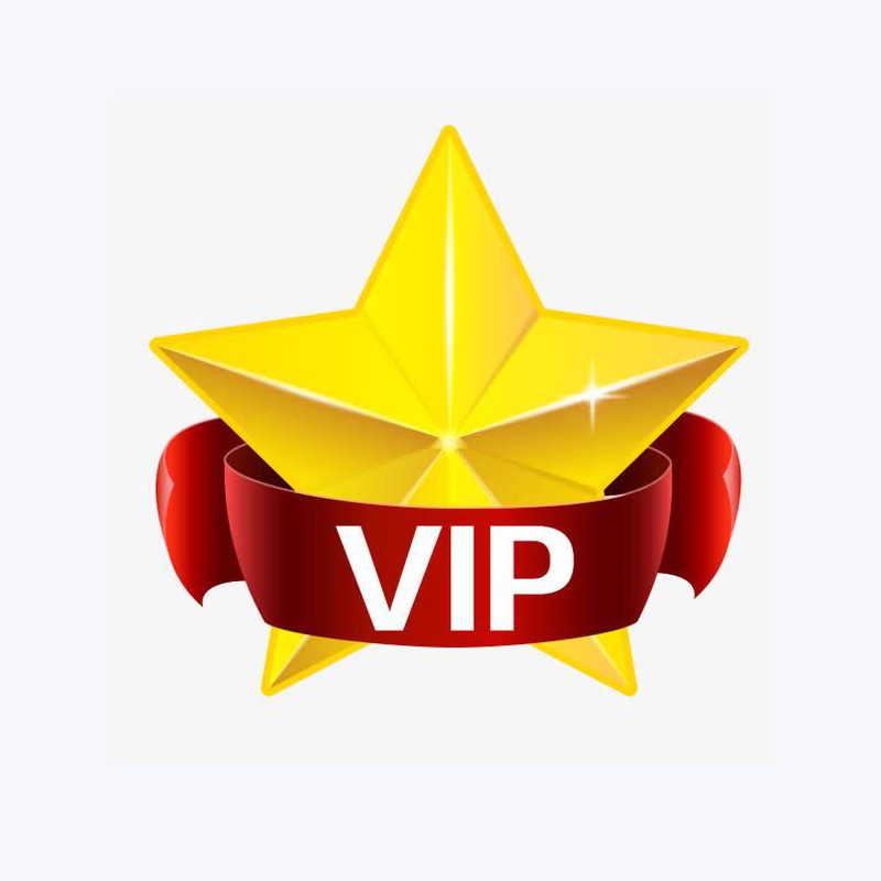 PM2.5 Mask VIP Link