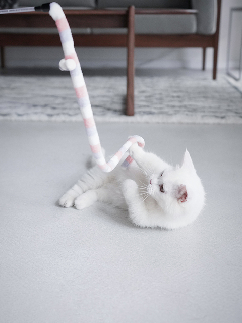 Teaser Stick for Cats. Interactive toy 5