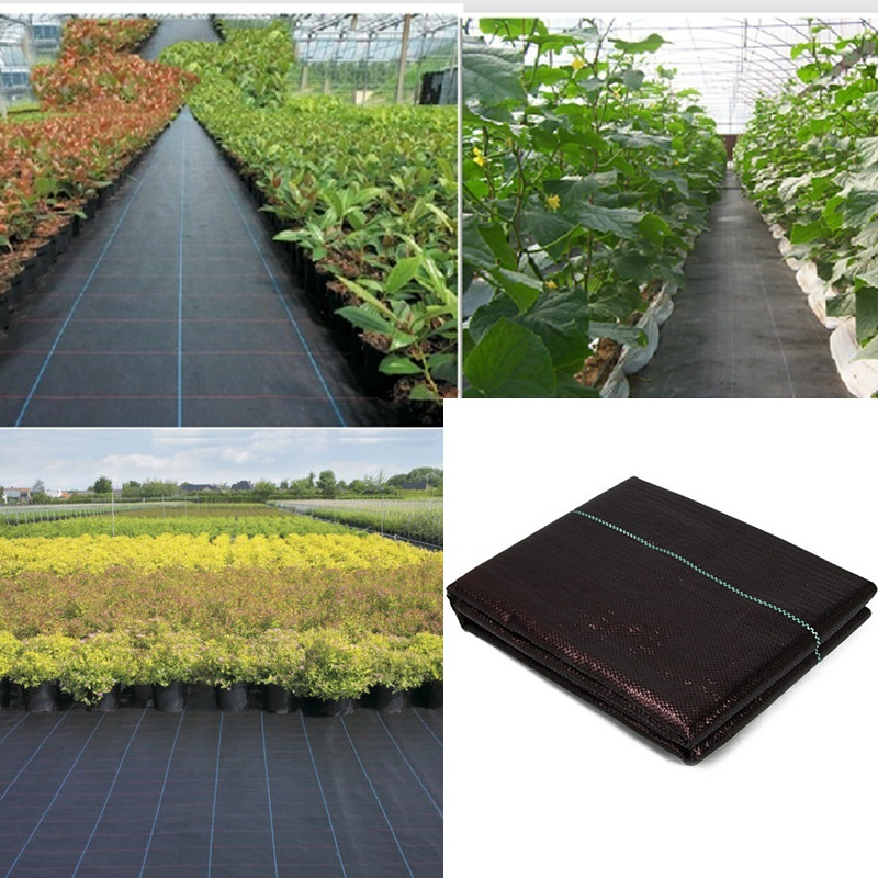Ecology Agricultural Permeable Weeding Cloth Garden Orchard PE Anti-Grass Ground Mats Greenhouse Weed Barrier Fabric Plant Cover