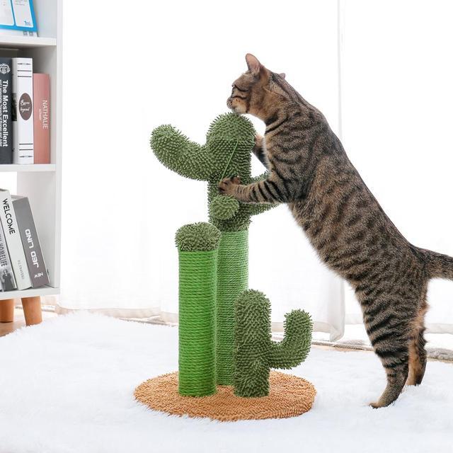 Drop Shipping Cat Cactus Tree Pet Cat Tree Toys with Ball Scratcher Posts 1