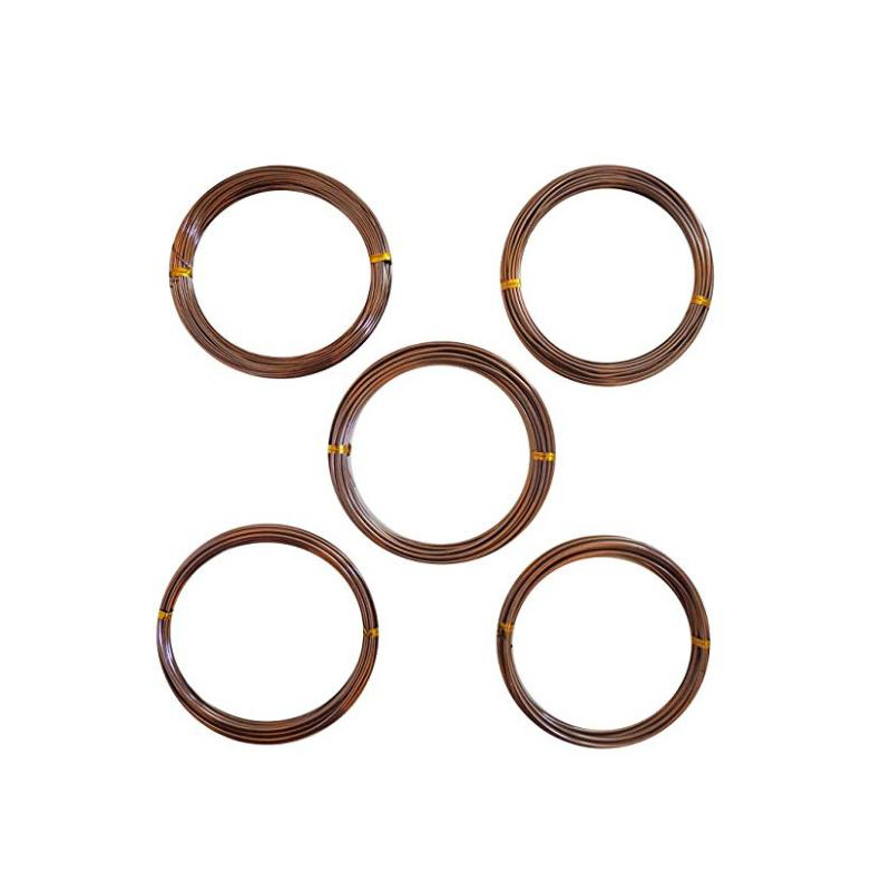 Anodized Aluminum Bonsai Training Wire 5-Size Starter Set-1.0mm,1.5mm,2.0mm,2.5mm,3.0mm(147 Feet Total)(5 Sizes,Coffee)(China)