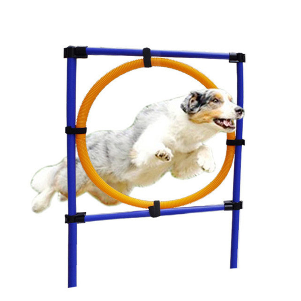 Pet Sports Equipment Training Toys Dogs High Jumping Ability Training Loop With Storage Bag Outdoor Jumping Circle Games