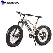 48V 1000W Motor Bike Snow Fats Tire Electrical Bike Electrical Mountain Bike Mtor Wheel Lithium Battery Electrical Bike