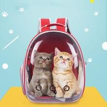 Sac à dos de Transport pour animaux de compagnie, sacoche de Transport respirant pour petits chiens et chats