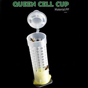 Kit de tasses d'élevage d'abeilles 100 pièces/ensemble | Cages à roulettes de cheveux d'abeille de reine, gobelets à cellules d'abeilles en plastique, équipement d'outils d'apie