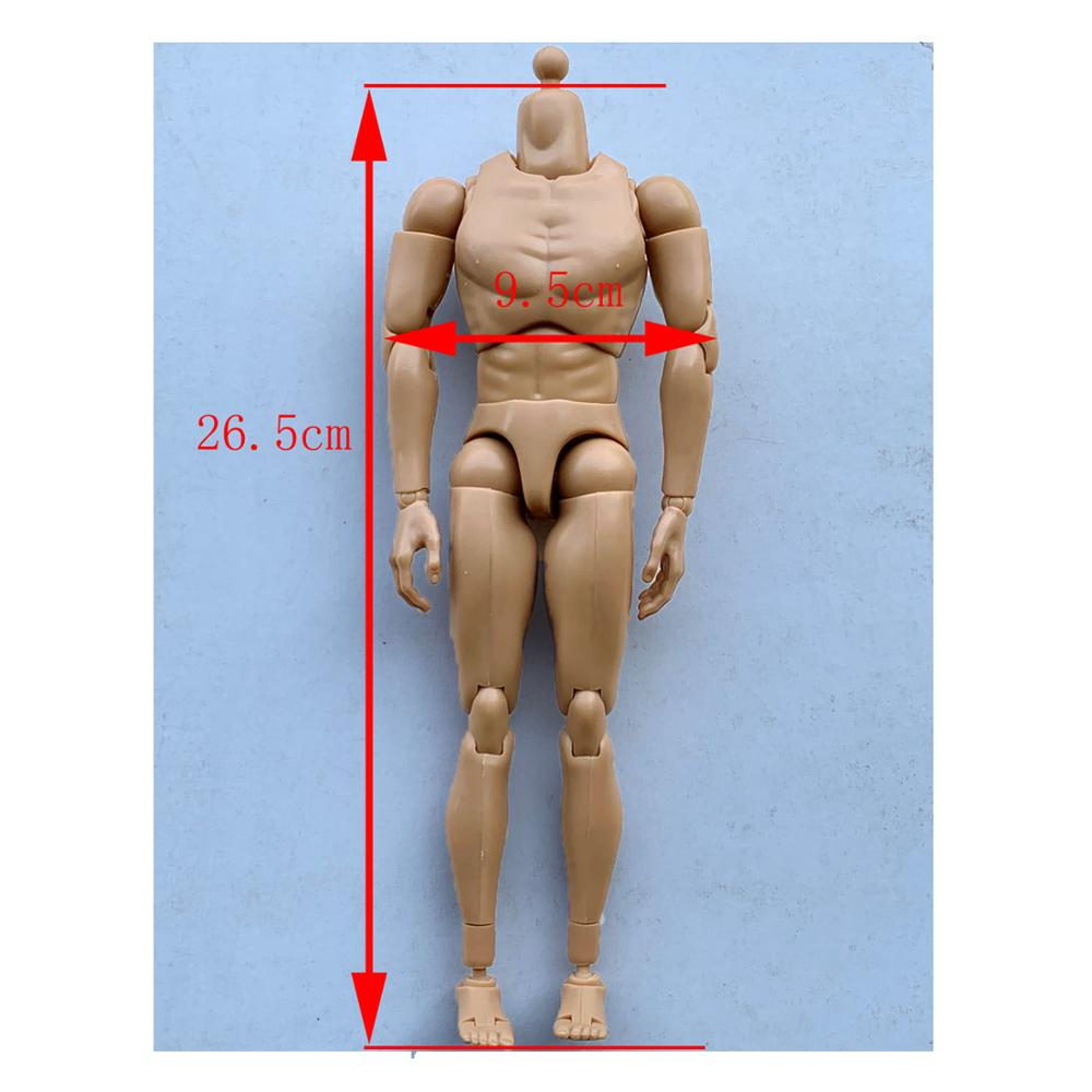 1:6 Scale Narrow Shoulder Male Muscular Figure SUPER DURABLE For Hot Toys TTM18
